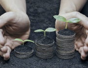 pension_fund