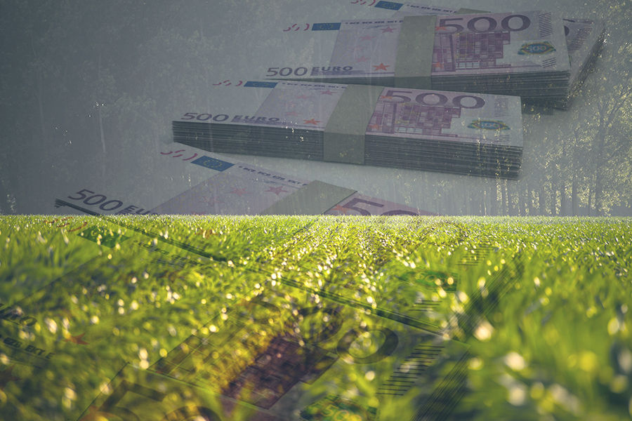nature-field-forest-agriculture-money
