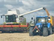 harvest-grain